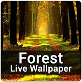 Forest Live Wallpaper - Nature Forest HD Wallpaper