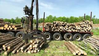 Cedar Log Peeler