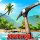 Island Is Home 2 Survival Simulator Game Download on Windows