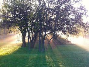 Photo: LIfting Fog