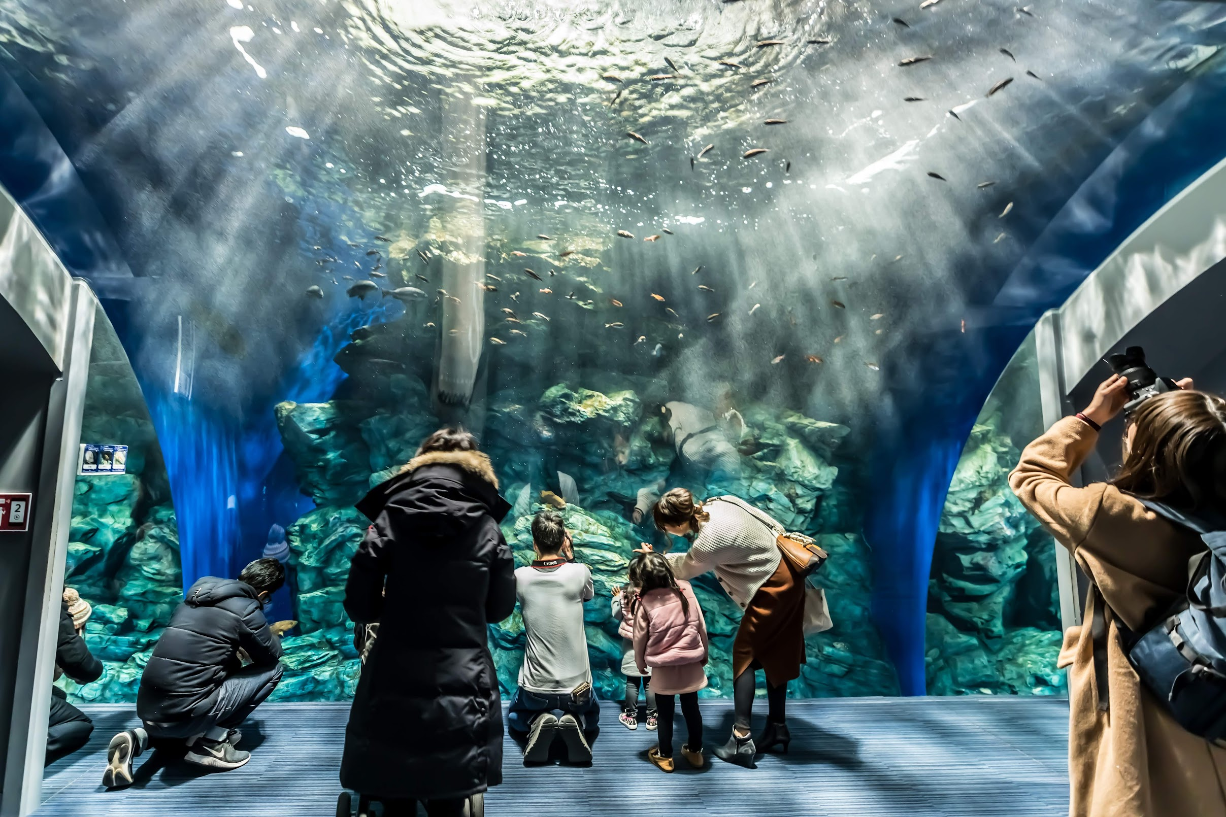 Marine World Uminonakamichi1