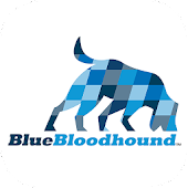 BlueBloodhound