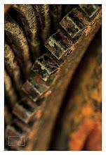 Photo: Eastern Sierras-20120715-198