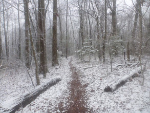 Photo: Snowy day in Georgia