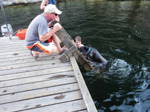 Photo: We are not near the shore now so this is how Bailey gets out of the water. No wonder Todd's back hurts all the time.
