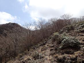 左の岩場が最高点