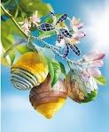 """bloemtak met vruchten van partjes sinaasappel, half omhulde citroen en limoen met """"bladerdek"""""""