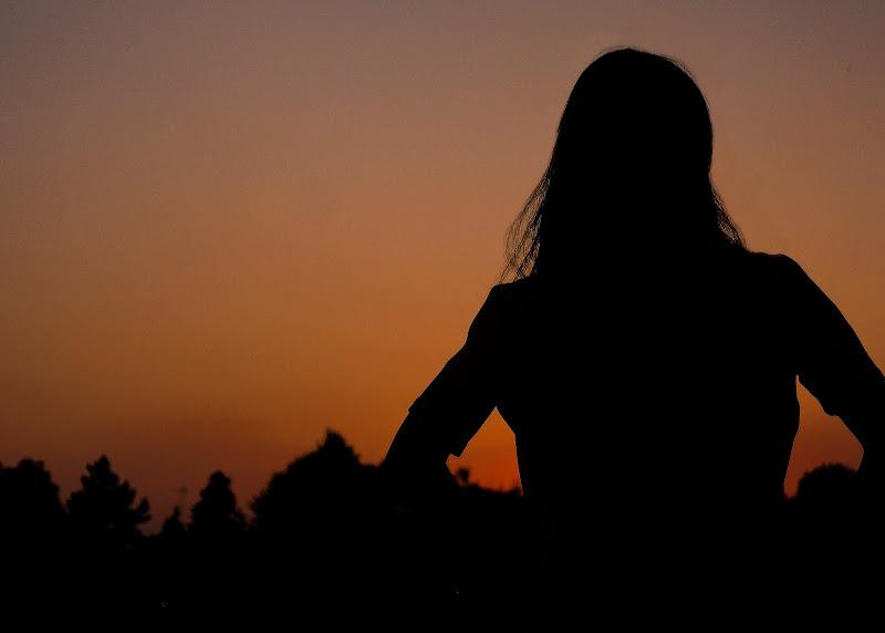 Silhouette di felix_