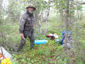 Photo: Трава, кусты, болото. С трудом нашли моховой пятачок под палатку.