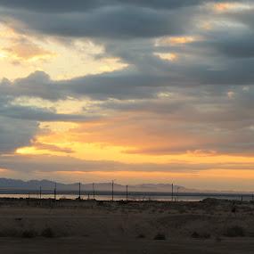 by Jessy Joplin - Landscapes Sunsets & Sunrises ( clouds, sky, sunrise, morning, landscape,  )