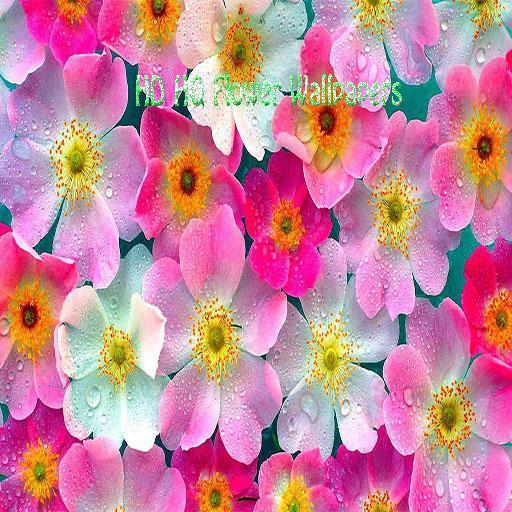 HQ高清壁紙花卉 攝影 App LOGO-硬是要APP