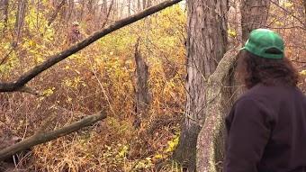 Hoosier Bigfoot