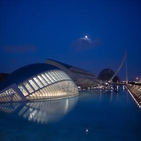Ciudad de las Artes y las Ciencias by VAM Photography - Buildings & Architecture Other Exteriors ( spain, valencia, travel, landscape, architecture,  )