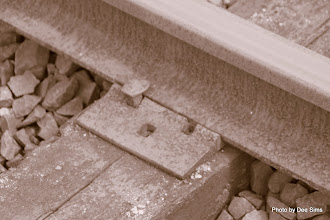 Photo: (Year 2) Day 346 - The Trolley Tracks