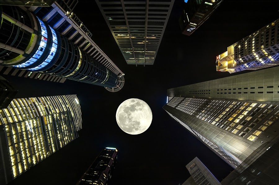rockets to the moon by Max Ooi - Buildings & Architecture Office Buildings & Hotels