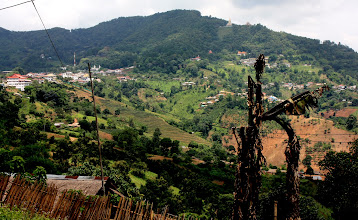 Photo: Day 339 -  Slopes of  Mae Salong Valley