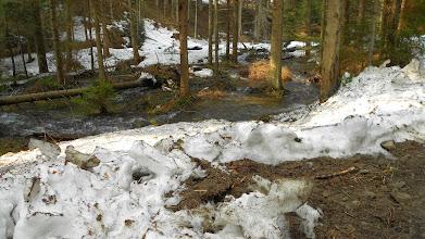Photo: reszta wycieczki znalazła slady zimy