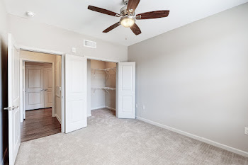 Bedroom with plush carpet, ceiling fan, neutral colored walls, and access to a walk in closet