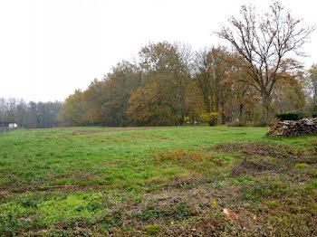 terrain à Saint-Christophe-en-Bresse (71)