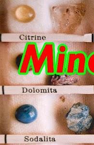 Minerals 1.0