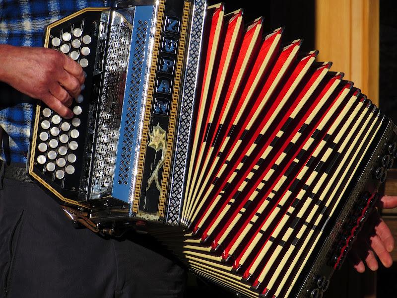 Fisarmonica in funzione di Giorgio Lucca