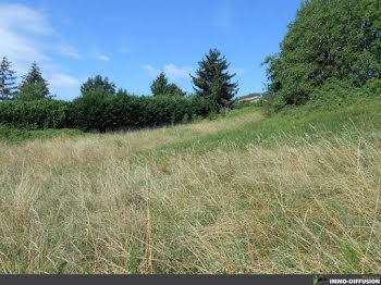 terrain à batir à Chatillon-la-palud (01)