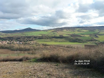 terrain à Saint-Vincent (63)