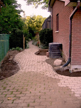 Photo: Existing stone was redesigned into a curved path, allowing for planting pockets to soften the look of the house.