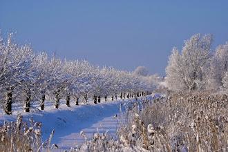 Photo: Landschappen. Sneuwlandschap. Foto: Henk van Schie.
