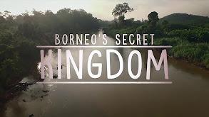 Borneo's Secret Kingdom thumbnail