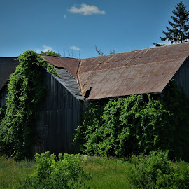 by Denise O'Hern - Buildings & Architecture Decaying & Abandoned