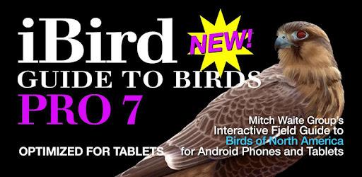 iBird Pro Birds North America - Apps on Google Play