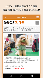 DOG!フェスタ- screenshot thumbnail