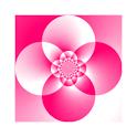 Math Prodigy icon
