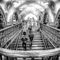 MetroMosca di