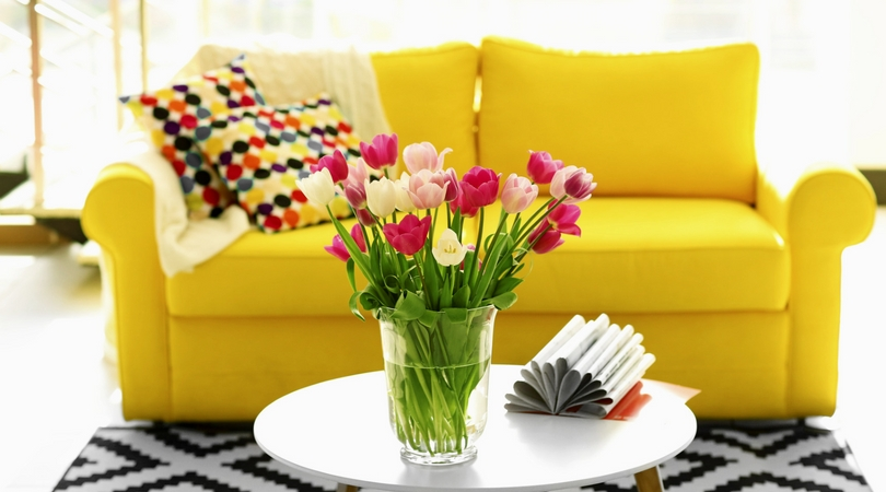 Colorful Apartment Decorating-image