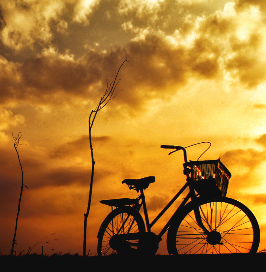 rest in afternoon by Indra Jaya Kusuma - Transportation Bicycles