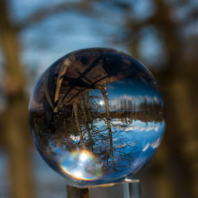 Nature in a ball by Karen Peirce - Artistic Objects Glass