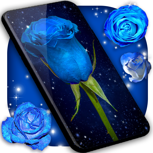 الوردة الزرقاء خلفيات ورد ازرق Wilkee