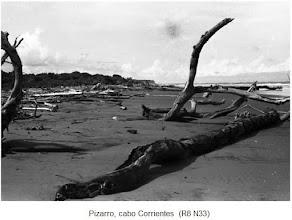 """Photo: """"Hermanos"""" de los """"potrillos""""*: con troncos de arboles que navegaron. *sobre éstos ver: http://tarabitares-y-divaneos.blogspot.com/2009_10_03_archive.html"""