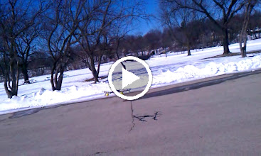 Video: Octo-V First Generation Unstable Flying