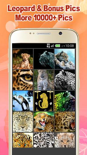 Cool Leopard Wallpaper