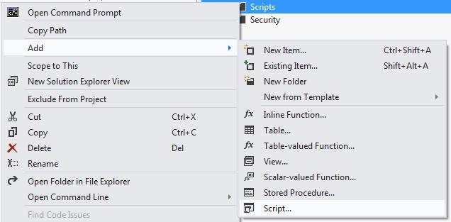 Adding Script