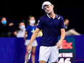 David Goffin blijft, ondanks zijn snelle uitschakeling, op de vijftiende plaats staan op de ATP-Ranking