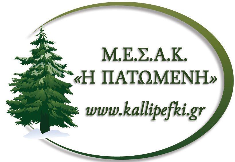 MESAK KAPELO_1.jpg