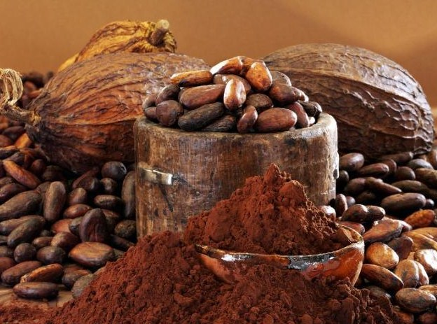 Cocoa Extract May Counter Alzheimer's Disease