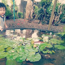 Lotus Float Baby by Amiya Velayo - Nature Up Close Gardens & Produce