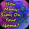 SIms On Iqama of Saudi Arabia ? icon
