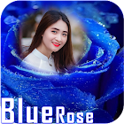 Blue rose photo frames icon