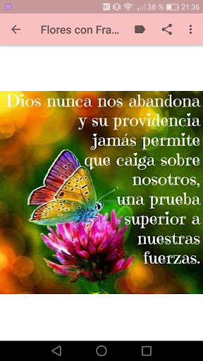 Download Flores Con Frases Cristianas Google Play Softwares